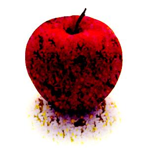 リンゴの画像 p1_5